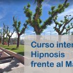 "Curso intensivo ""Hipnosis frente al mar"" con la Dra. Esther Costa"